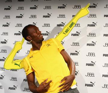 Bolt Arms