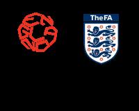 A következő két vb helyszíneiről dönt a FIFA