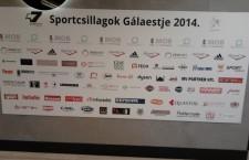 Az Év Sportolója 2014 – Állócsillagok Akváriumban