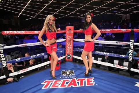 Tecate ring girls