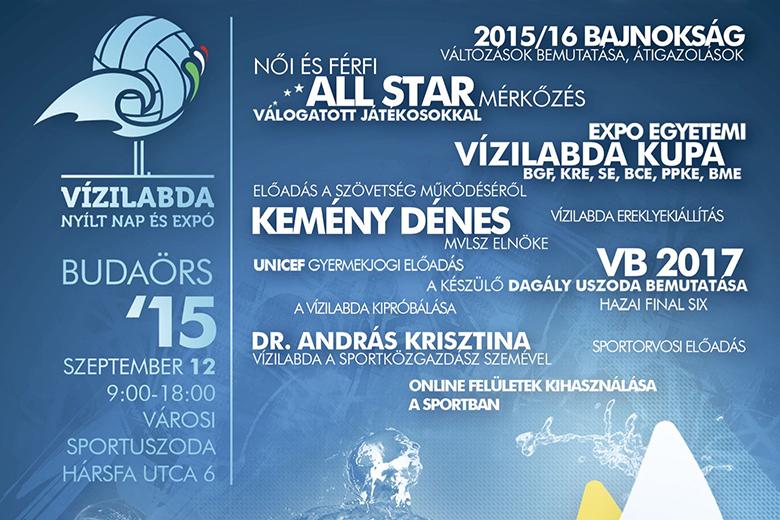 vizilabda-expo-2015-poszter